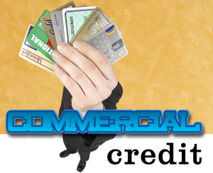 Report Commercial Credit